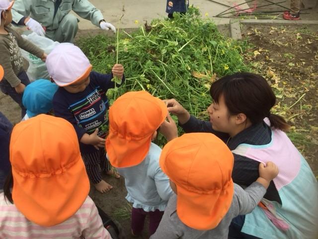 虹組 園庭あそび(2歳児)